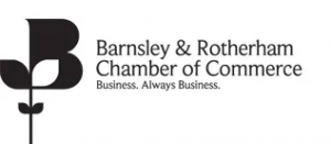 br-chamber-webite-logo-new png